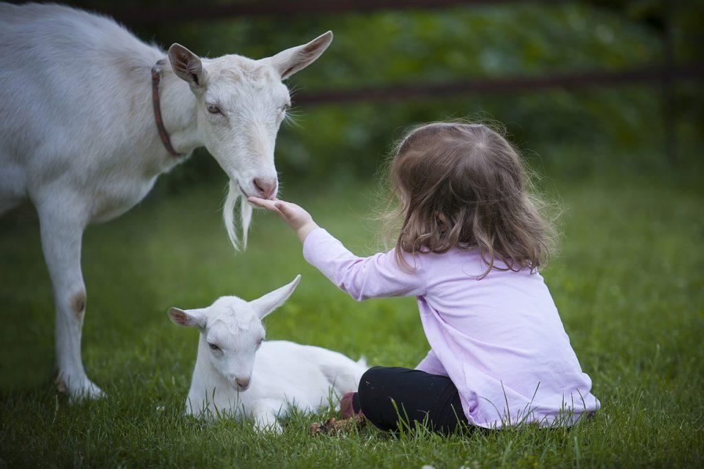 rapporto natura e bambini