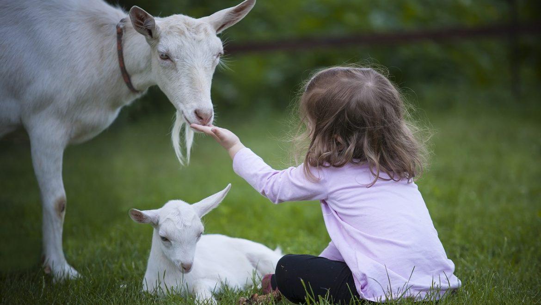 Metodo Steiner: l'importanza della natura per il bambino